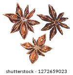 anise star illustrations set.... | Shutterstock . vector #1272659023