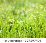 Abstract Green Natural...