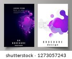 the vector layout of a4 format... | Shutterstock .eps vector #1273057243