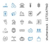 harvest icons set. collection... | Shutterstock .eps vector #1273147960