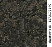 terrain topography. actual... | Shutterstock .eps vector #1273173190