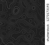 amazing topography. actual... | Shutterstock .eps vector #1273173193