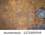 rust on old wall background    Shutterstock . vector #1273309549
