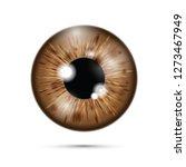 brown realistic eyeball | Shutterstock .eps vector #1273467949