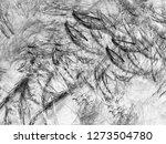 grunge abstract black... | Shutterstock . vector #1273504780