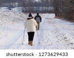 scandinavian nordic walking a...   Shutterstock . vector #1273629433