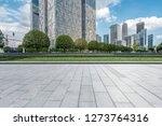 panoramic skyline and modern... | Shutterstock . vector #1273764316