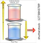 exothermic reaction   change in ... | Shutterstock .eps vector #1273843789