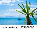 view of a sailing boat on coast ...   Shutterstock . vector #1274068003