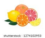 orange  lemon  grapefruit... | Shutterstock .eps vector #1274102953