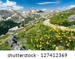 Hiking Trail Through Field Of...