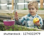 biology lesson. small boy at... | Shutterstock . vector #1274322979