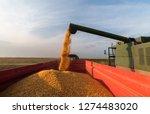 pouring corn grain into tractor ... | Shutterstock . vector #1274483020
