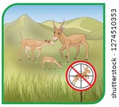 saiga  male  female  species ...   Shutterstock .eps vector #1274510353