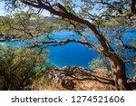 walking lycian way adventure.... | Shutterstock . vector #1274521606