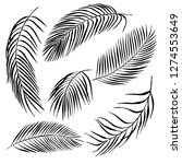 hand drawn tropical plants....   Shutterstock .eps vector #1274553649