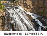 Gibbon Falls  Gibbon River ...
