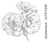 hand drawn flowers | Shutterstock . vector #127471349