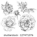 hand drawn flowers | Shutterstock . vector #127471376