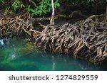 tha pom khlong song nam... | Shutterstock . vector #1274829559