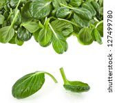 Fresh Green Leaves Spinach Or...