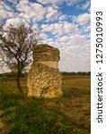 ancient roman funerary monument ... | Shutterstock . vector #1275010993