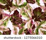 bold florals. large hawaiian... | Shutterstock . vector #1275066310