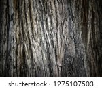 background with trunk of an old ... | Shutterstock . vector #1275107503