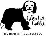 bearded collie dog silhouette...   Shutterstock .eps vector #1275365680