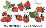 vector strawberry fruits. green ...   Shutterstock .eps vector #1275703003