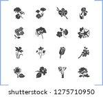 flora icon set and plumbago...