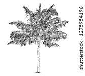 hand drawn illustration of... | Shutterstock .eps vector #1275954196