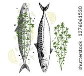 drawing of fresh mackerel and... | Shutterstock .eps vector #1276061530