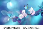 beautiful blue butterfly in... | Shutterstock . vector #1276208263