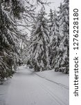 fairy tale winter in the... | Shutterstock . vector #1276228180