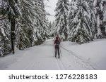 fairy tale winter in the... | Shutterstock . vector #1276228183