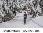 fairy tale winter in the... | Shutterstock . vector #1276228186