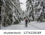fairy tale winter in the... | Shutterstock . vector #1276228189