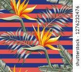 exotic flowers bird of paradise ... | Shutterstock .eps vector #1276232476