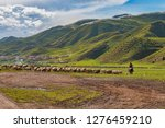lone tibetan female rider on... | Shutterstock . vector #1276459210