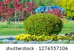 floral landscaping brings a... | Shutterstock . vector #1276557106