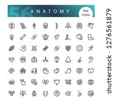 set of 56 anatomy of the human... | Shutterstock .eps vector #1276561879
