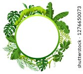 background with jungle plants.... | Shutterstock .eps vector #1276650073