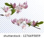 magnolia branches isolated... | Shutterstock .eps vector #1276695859