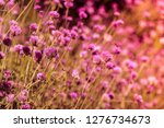 blur image background of... | Shutterstock . vector #1276734673