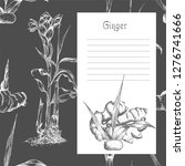 set hand drawn of ginger roots  ... | Shutterstock .eps vector #1276741666