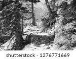 rocky mountain national park in ... | Shutterstock . vector #1276771669