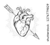 Human Heart Pierced With...
