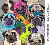 portrait of many pugs.... | Shutterstock .eps vector #1277254633