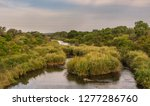 river going through kruger... | Shutterstock . vector #1277286760